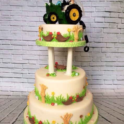 A 3 tier farmyard themed wedding cake, made by The Perfect Pudding Company. Tractor topper supplied by the bride